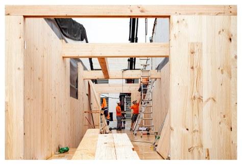 Busquem alumnes per participar al curs en línia sobre construcció amb fusta